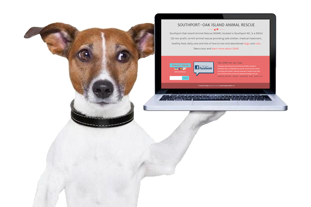 Dogs Love the New SOAR Website