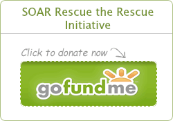 SOAR Rescue the Rescue Fundraiser